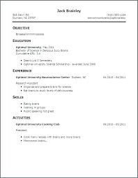 Good Examples Of A Resume Beauteous Picture Of A Good Resume Socialumco