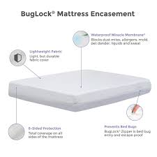 mattress protector bed bugs. Delighful Protector BugLock Basic Bed Bug Proof Mattress Cover 6Sided Encasement Inside Protector Bugs