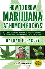 Cannabis Plant Growth Chart How To Grow Marijuana At Home In 60 Days A Complete Step By