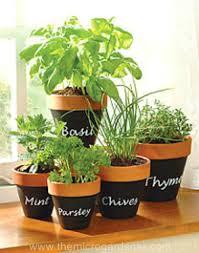 Chalkboard Paint Indoor Herb Planters
