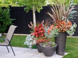 Small Picture 270 best Container Garden Ideas images on Pinterest Garden