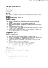 Job Resume Skills Examples Customer Service Hard Objective Section