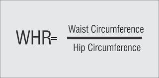 Waist To Hip Ratio Calculator Whr Body Shape Calculator