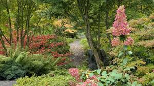 Small Picture Beautiful garden pictures hd
