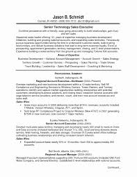 Libreoffice Resume Template Beautiful Resume Examples This Resume