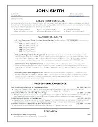 resume writing for it professionals it professional resume writing sample professional resume template