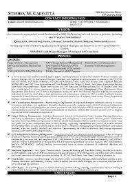 Sap Basis Sample Resume Sap Security Resumes Kasta Magdalene Project Org