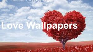 Amazing Love Wallpapers including ...