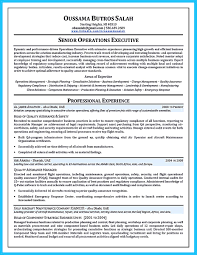 Aircraft Mechanic Resume Examples Persuasive Research Essays On Single Parenting Make Your