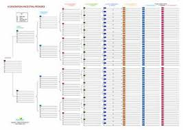 Generation Chart Details About Family Tree Chart 8 Generation Ancestral Pedigree