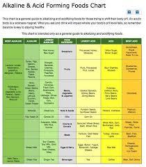 Pin On Heal Alkaline Acid Food Charts