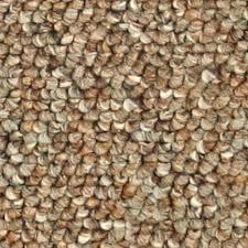 Shop Coronet Stock Carpet Cinnamon Textured Interior Carpet at