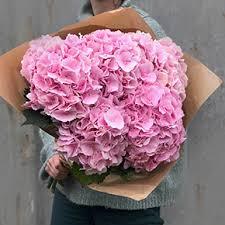 Купить <b>букет 5 розовых гортензий</b> в Москве - 2 350 руб ...
