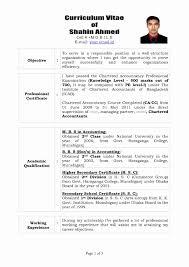 Resume Format For It Professionals Elegant Cvmaker Resume Templates