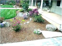 ground cover ideas outdoor dog toilet area potty solutions friendly backyard station inexpensive for dogs