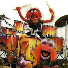 animal muppet drums. Delighful Animal Muppet Drummer Animal Ronnie Verrell Animal On Drums