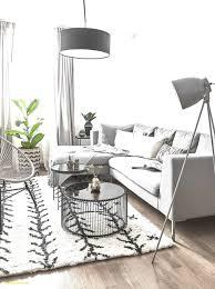 Teppich Für Esszimmer Inspirierend Schön Amazon Teppiche