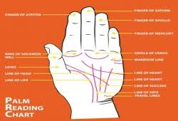 What Is Palm Reading Chart And Its Explanation Palm