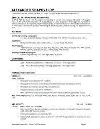 Sql Developer Resume Pl Sql Developer Resume Example Mkma Beauteous Resume For Oracle Developer
