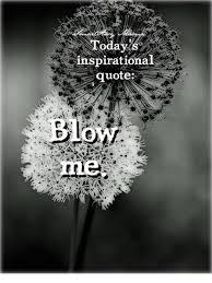 Inspirational qoute