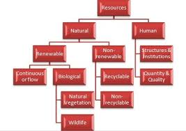 Flow Chart Of Classification Of Resources Prepare A Pictorial Chart Showing The Classification Of