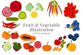 Here you'll find hundreds of high quality vegetable transparent png or svg. Fruit And Vegetable Illustration Graphic By Primafox Design Creative Fabrica In 2020 Vegetable Illustration Illustration Design Print Templates