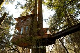 treehouse masters treehouse point.  Point Nelson Treehouse And Supply Portfolio Of Residential Treehouses Retreat  Kids Treehouses To Masters Point
