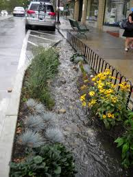 Small Picture Preventing Water Pollution How to Build a Rain Garden Rain