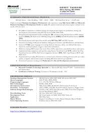 ssis sample resume