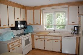 painting oak kitchen cabinets whitePainting Oak Cabinets White Ideas Countertop