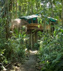 Review Of Hotels In Costa RicaTreehouse Monteverde Costa Rica