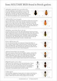 Bee Identification Chart Uk British Bumblebees Bee Flower Macro Honey Pollen