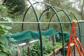 a gardener s musings building shade house from poly pipe shade house design for orchids