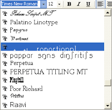 Fonts For Msword Magdalene Project Org