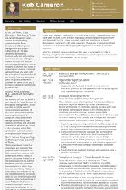 sample resume for business analyst business analyst resume samples visualcv resume samples database