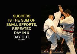 Karate Quotes Inspirational. QuotesGram via Relatably.com