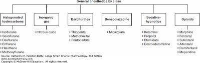 Respiratory Medications Chart Drugs Affecting Neurologic Function Lange Smart Charts