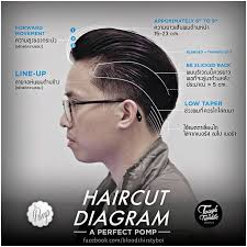 Fade Chart Idea Of Your Hair Use Excellent Amazing Mens Haircut Chart