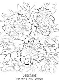 Small Picture Indiana State Flower coloring page Free Printable Coloring Pages