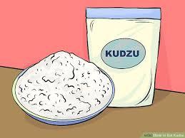 image led eat kudzu step 17