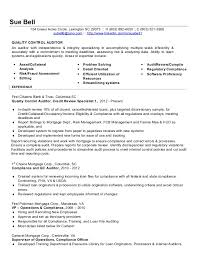 Auditor Resume
