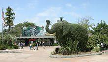 SDZG Library San Diego Zoo
