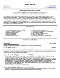 click here to download this customer service professional resume template httpwww a good customer service resume