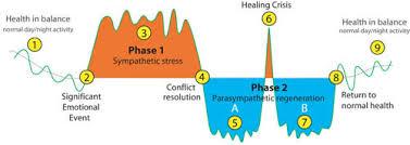 Positive Health Online Article Meta Kinetics A