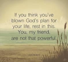 How can my fretting and worrying come up with anything better than he already has? If You Think You Ve Blown God S Plan For Your Life Rest In This You My Friend Are Not That Powerful Lisa Gods Plan Gods Plan Quotes Lisa Bevere Quotes