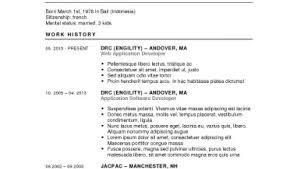 Resume Builder Word Resume Builder Wordpress Free Sample Examples
