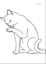 Cat Coloring Pages Free Kinkenshopinfo