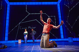 review the curious incident of the dog in the night time uk tour  when