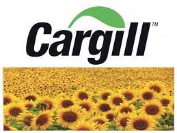 Каргіл.