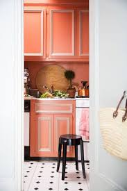Red And Gold Kitchen 17 Best Ideas About Coral Kitchen On Pinterest Coral Color